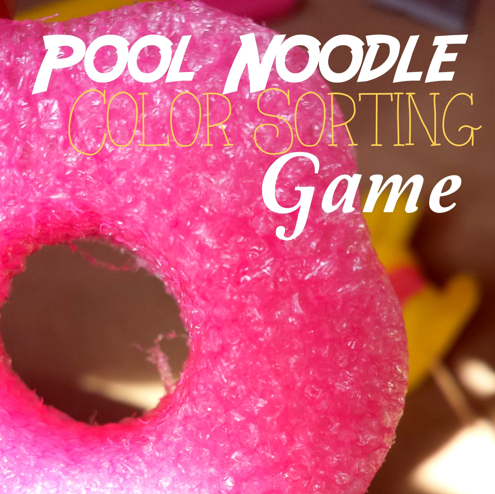 Pool Noodle Color Sorting Game