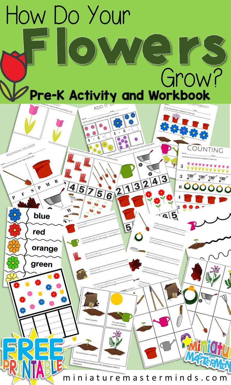 How Do Your Flowers Grow? Free Printable Garden Preschool Pack ...