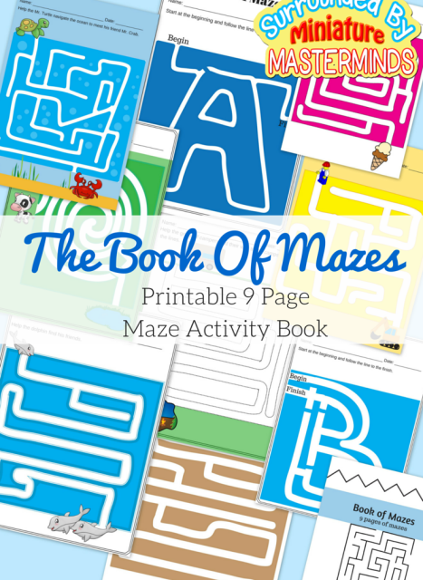 The-Book-Of-Mazes.-9-Maze-Activities.