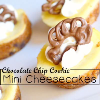 Chocolatechip Cookie Mini Cheesecakes With chocolate Turkey patterns