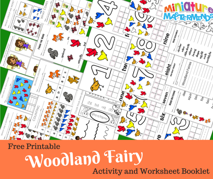 Woodland Fairy Printable Activity and Worksheet Booklet
