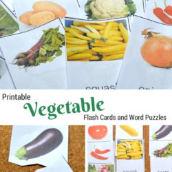 Printable Vegetable Flash Cards And Word Puzzles