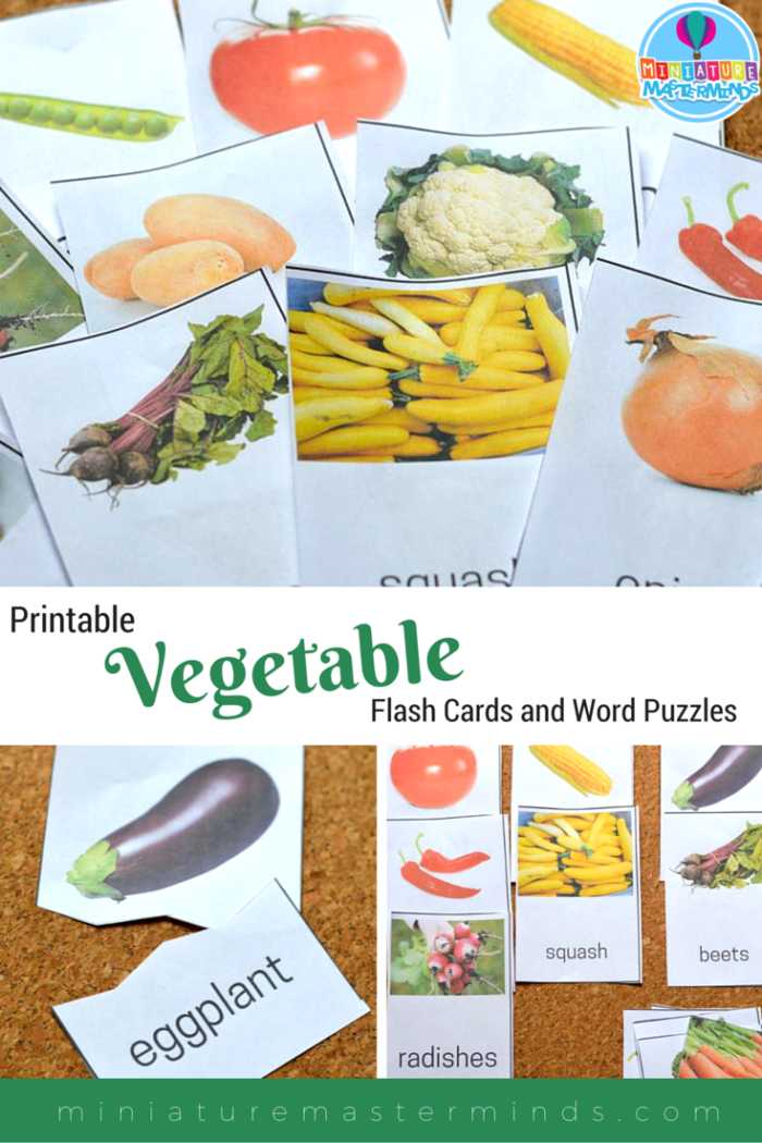 22 Printable Vegetable Flash Cards And Word Puzzles