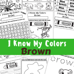 I Know My Colors Brown Workbook