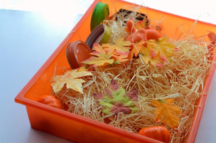 3 Fall Seasonal Sensory Play Ideas Sensory Bottle, Sensory Bin, and Halloween Themed Play Dough