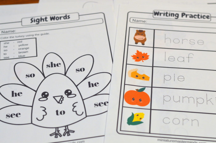 Printable 60 Page Preschool Thanksgiving Worksheet and Activity Book