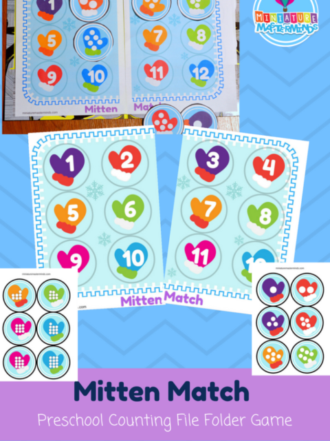 Mitten Match Preschool Counting File Folder Game