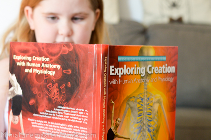 Apologia – Exploring Creation with Human Anatomy and Physiology ...