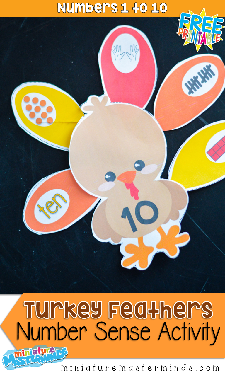 Turkey Feathers Number Sense Activity For Preschool and Kindergarten Thanksgiving Math Centers